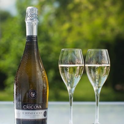 """Industrial complex CRICOVА presented a sparkling wine """"Crisecco"""""""